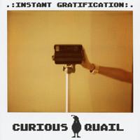 curiousquail_phixr