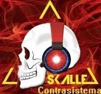skalle1