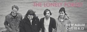 lonelyforest1
