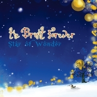 The Bright Forever, Star of Wonder